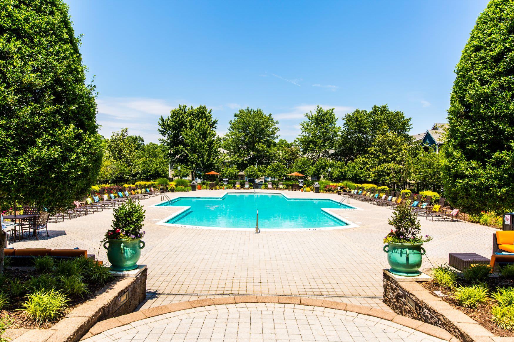 Beautiful swimming pool next to trees at Marquis at Silverton in Cary, North Carolina