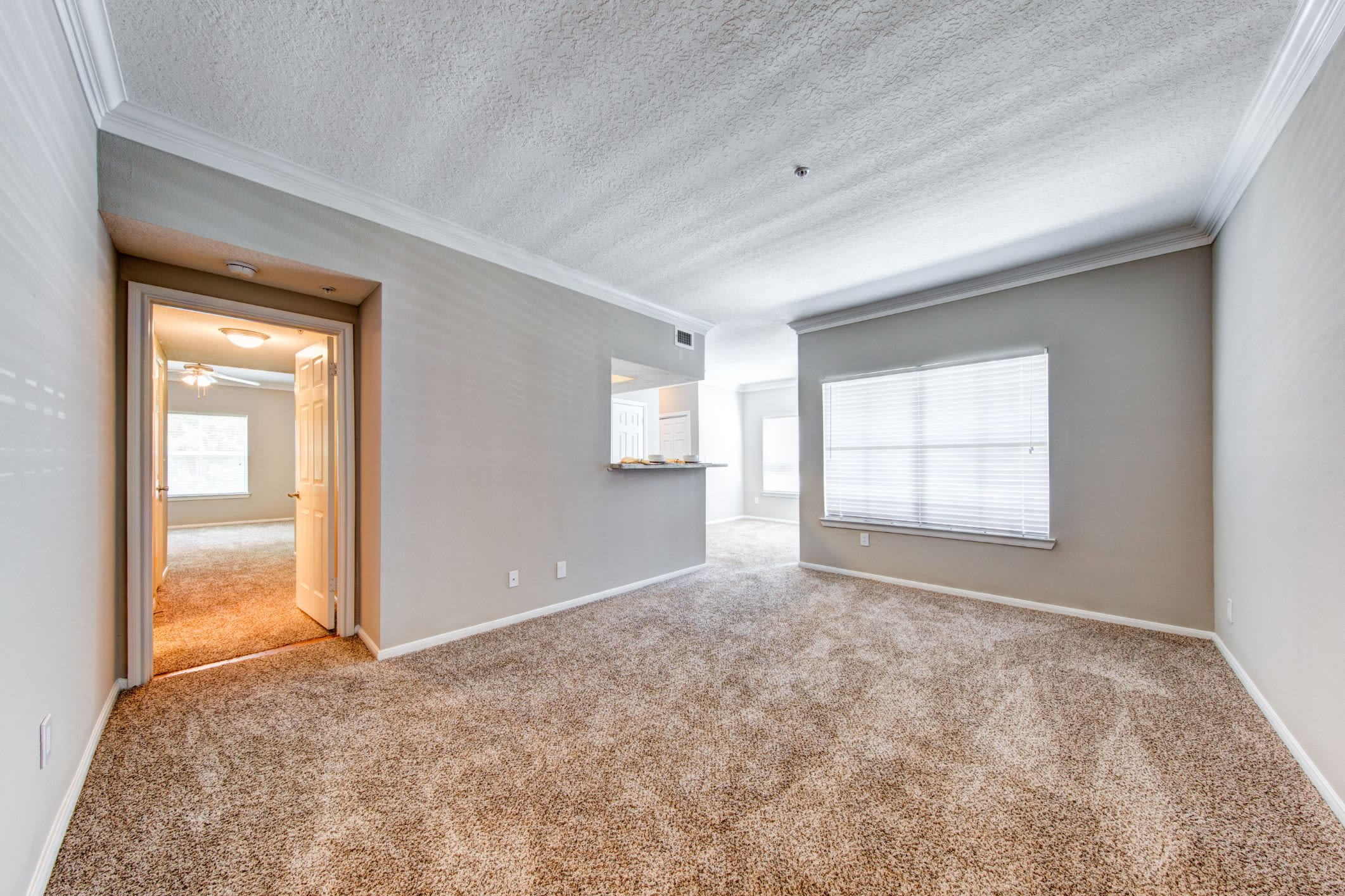 Bright room with carpet floors at Marquis at Silverton in Cary, North Carolina
