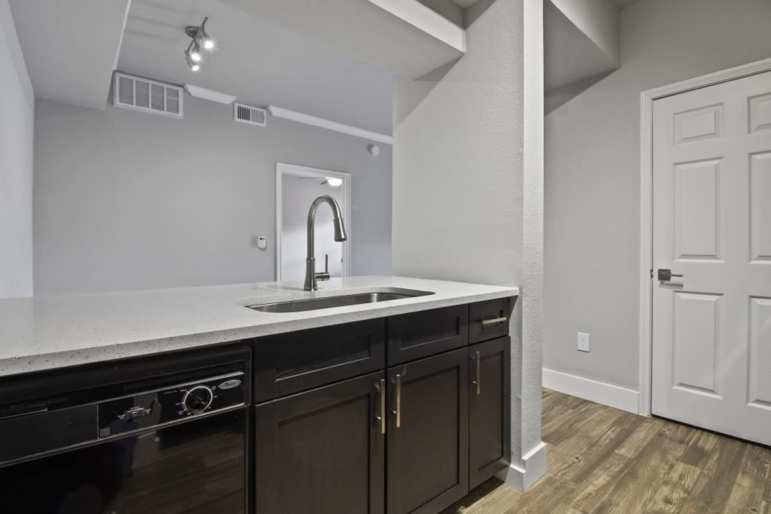 Kitchen counter at Emerson at Ford Park in Allen, Texas
