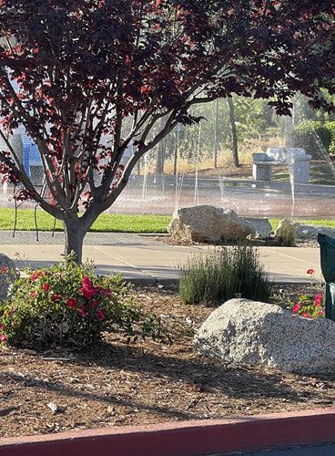 Blue Anchor Park Loomis CA