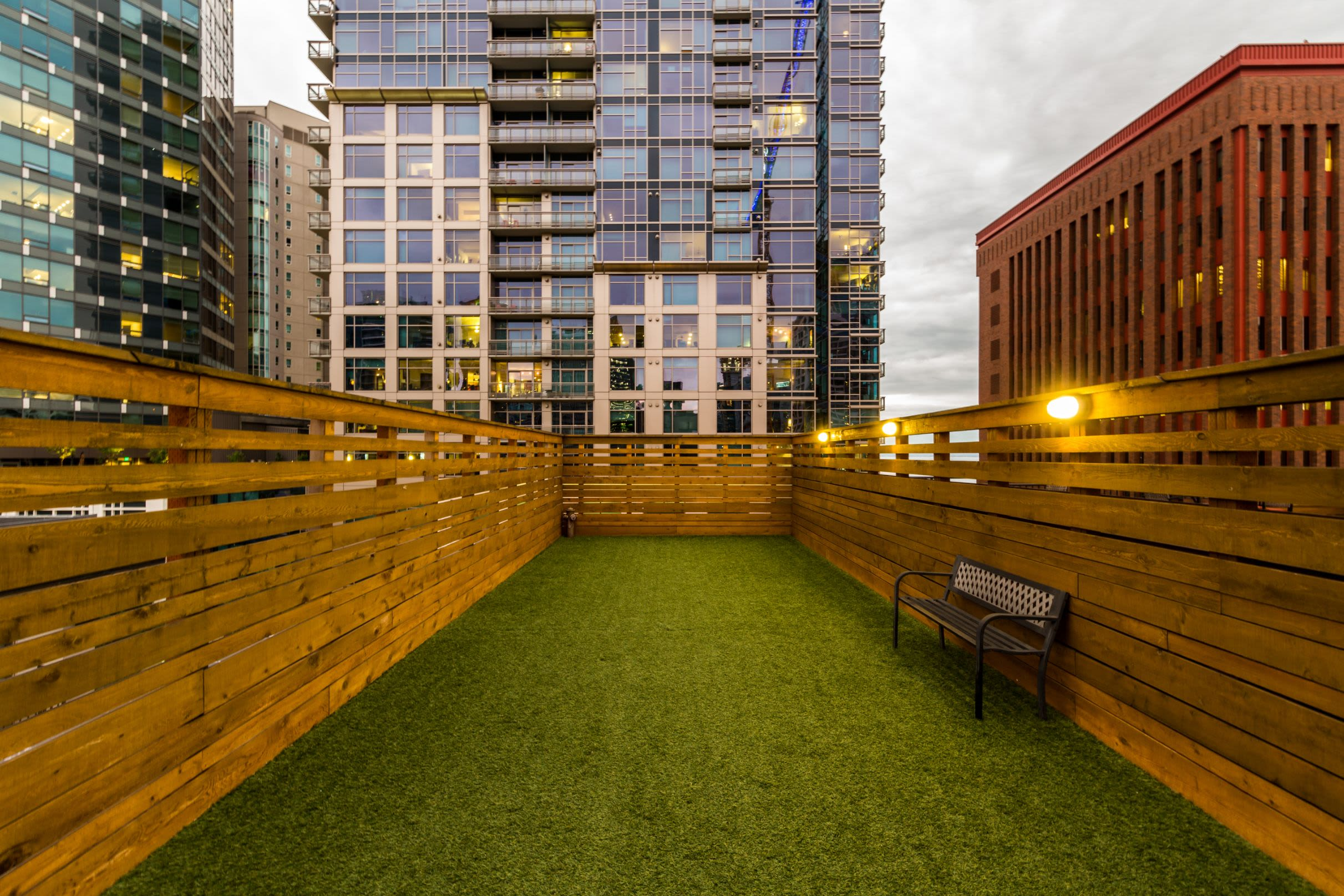 Rooftop dog park at Marq 211 in Seattle, Washington
