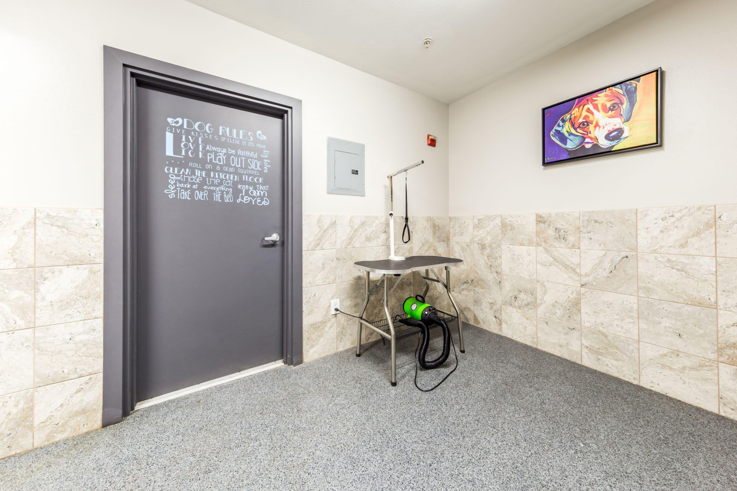 Drying station at pet wash at Marq 211 in Seattle, Washington