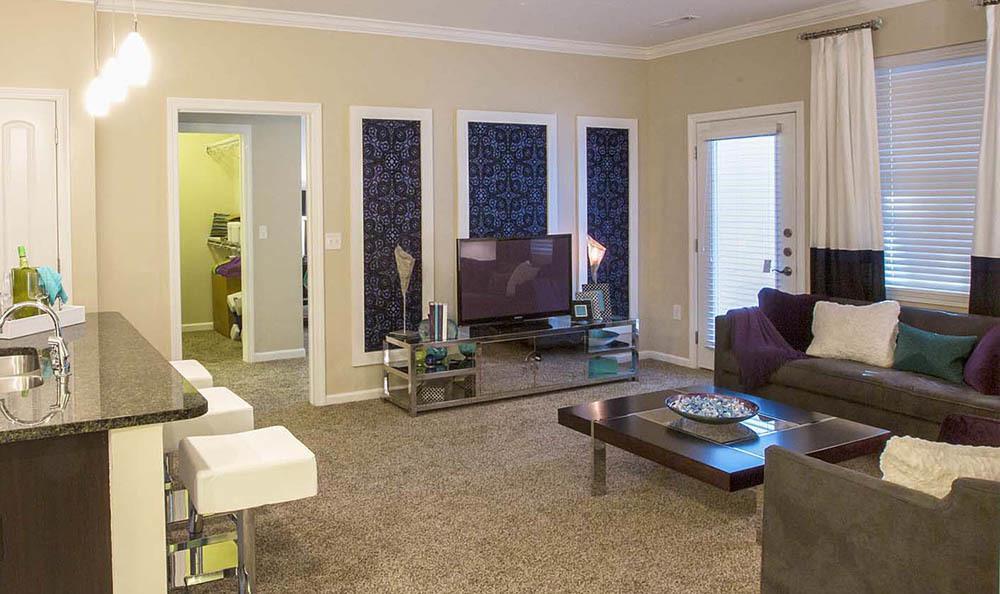 Living Room at Reserve on Salisbury