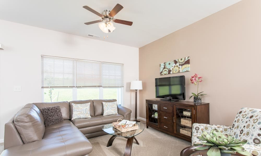 Enjoy apartments with a modern living room at Preserve at Autumn Ridge in Watertown, New York