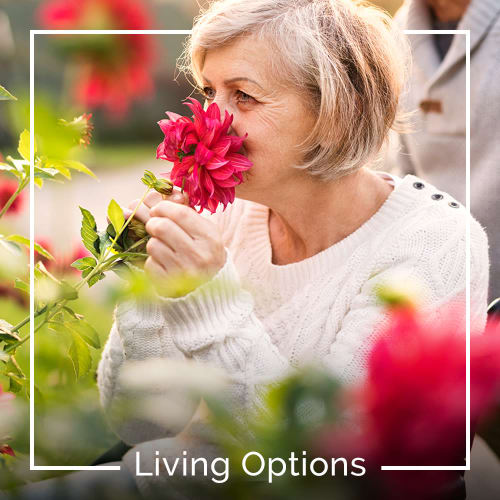 View the Living Options at Keystone Place at Richland Creek in O'Fallon, Illinois