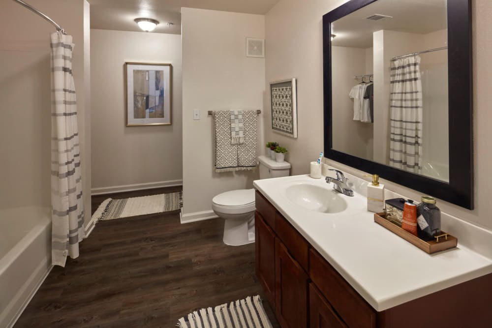 Large Bathrooms Walk In Closets at Trifecta Apartments in Louisville, KY