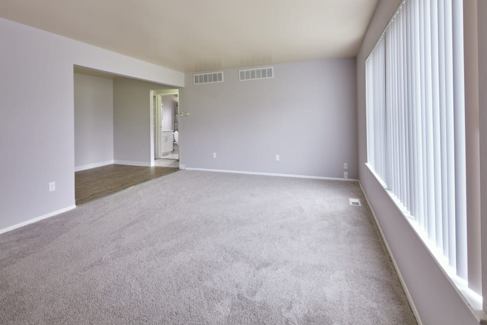 Naturally lit living room at President Madison Apartments in Madison Heights, Michigan