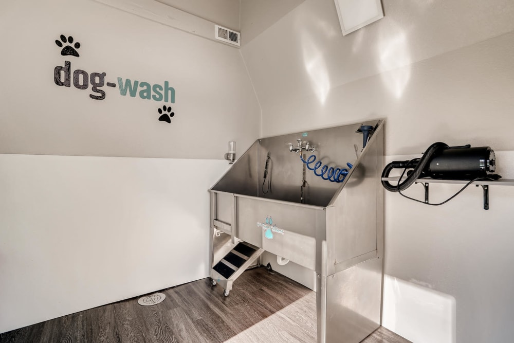 Pet Spa washing tub area with stainless steel wash station at The Ranch at Bear Creek Apartments & Townhomes in Lakewood, Colorado