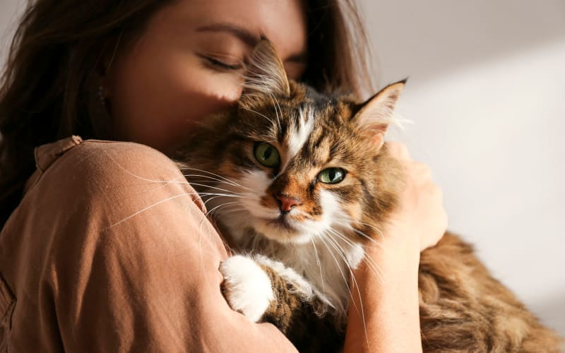 Resident and her cat snuggling in their new home at Casa Granada in Los Angeles, California