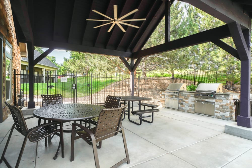 Outdoor picnic & bbq area at The Pines at Castle Rock Apartments in Castle Rock, Colorado