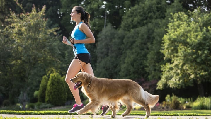 Woman running with her golden retriever in a park nearby Canopy at Citrus Park