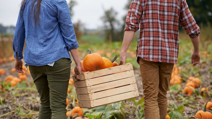 Man and woman holding a wooden crate with pumpkins in it at the pumpkin patch near Granite 550