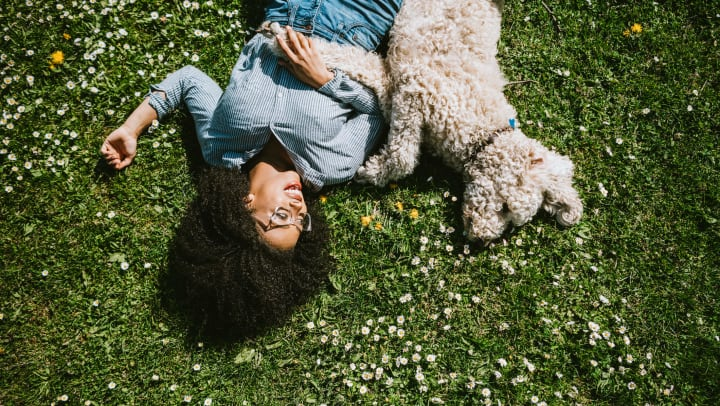 Woman lying on the grass next to a poodle dog