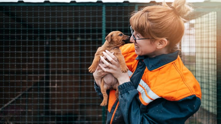 A female volunteer holding a puppy with a cage in the background.