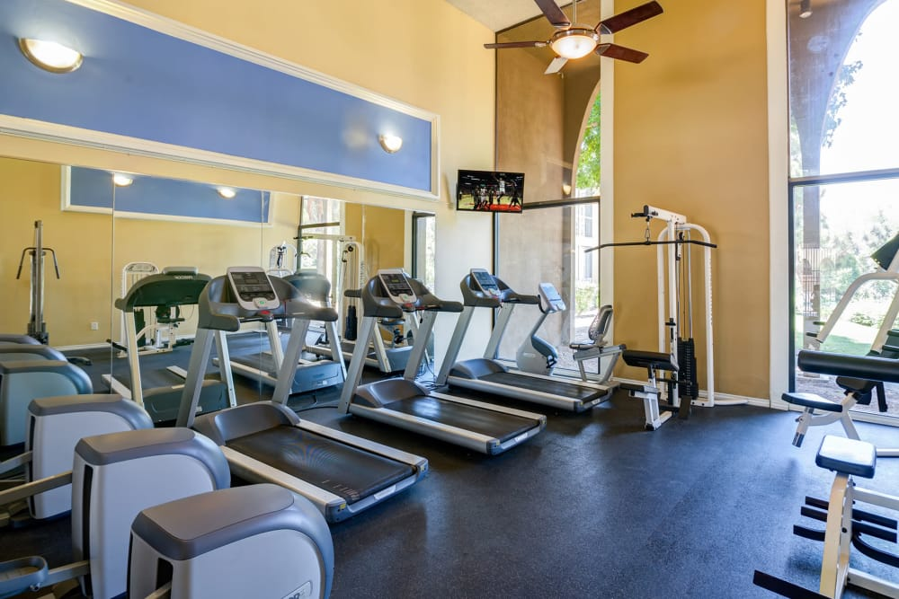 Fitness Center at Alvista on Baltimore