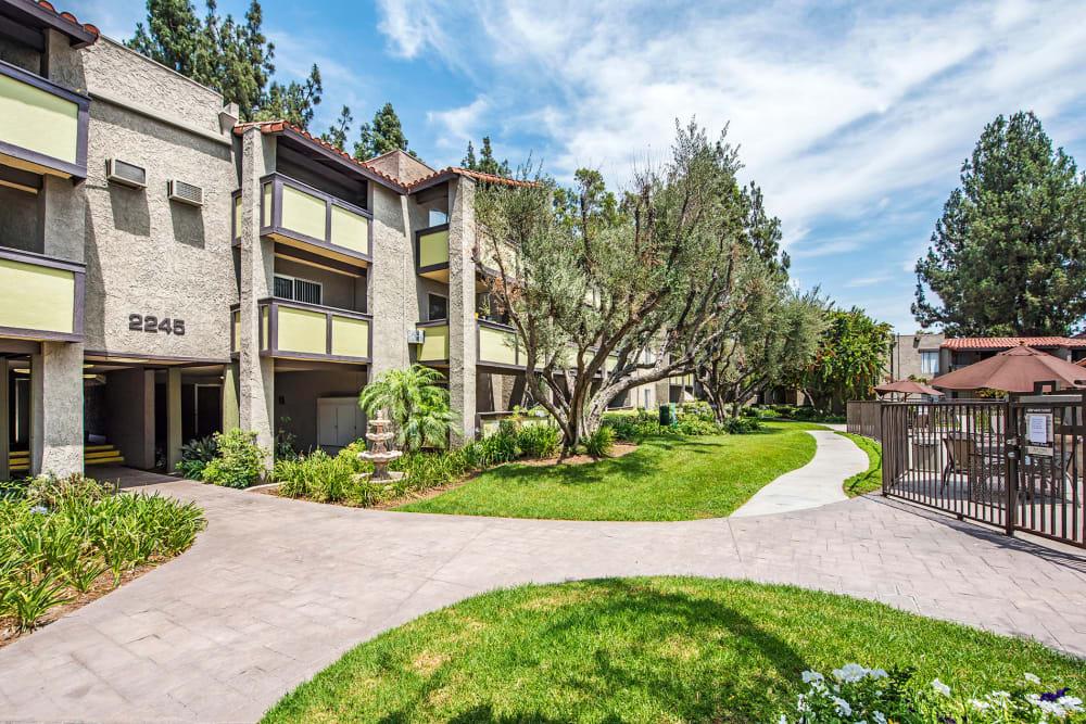Greenery outside apartment buildings at Olive Ridge in Pomona, California
