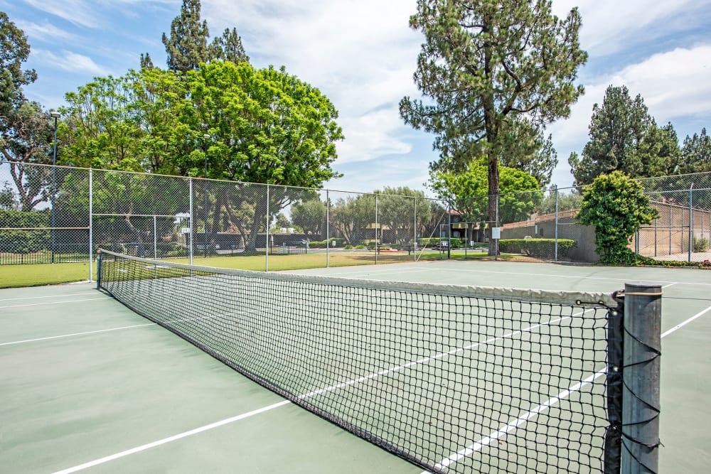 Tennis court at Olive Ridge in Pomona, California