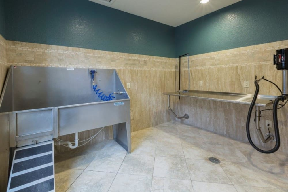Pet wash station at The Courtney at Lake Shadow in Orlando, Florida