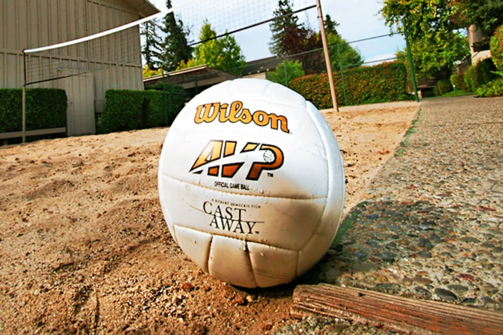 Volleyball court at Glenbrook Apartments in Cupertino, California