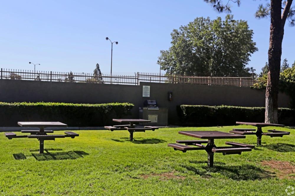 Outdoor picnic area at Olive Ridge in Pomona, California