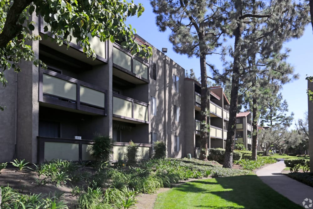 Exterior with greenery at Olive Ridge in Pomona, California