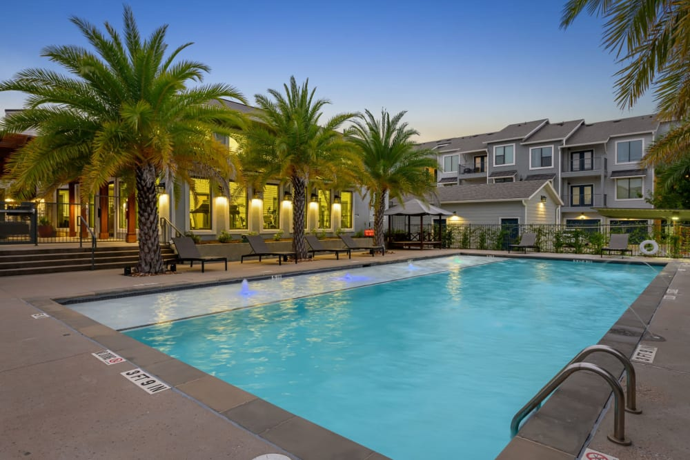 Beautiful swimming pool with palm trees at Marquis SoCo in Austin, Texas