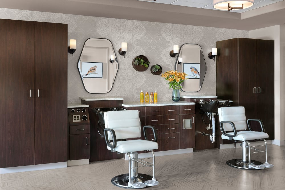 Salon Rendering