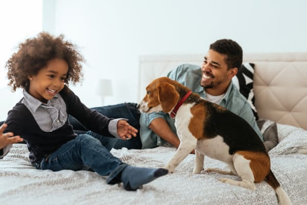 Family playing with dog at Alexander Pointe Apartments in Maineville, Ohio