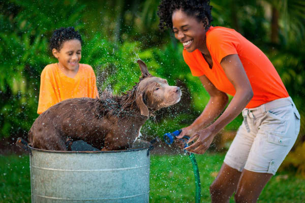 Residents giving their dog a bath at Parkland at West Oaks in Houston, TX