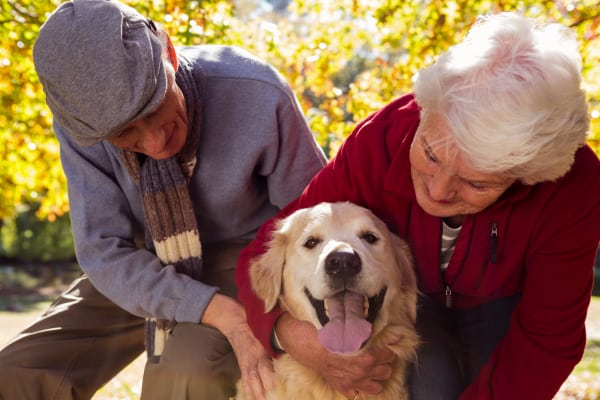 Happy resident couple with their dog at Pine Grove Crossing in Parker, Colorado
