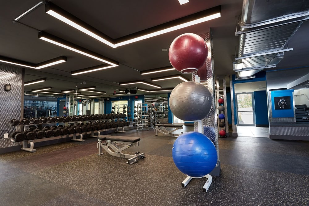 Resident fitness center at Aliro in North Miami