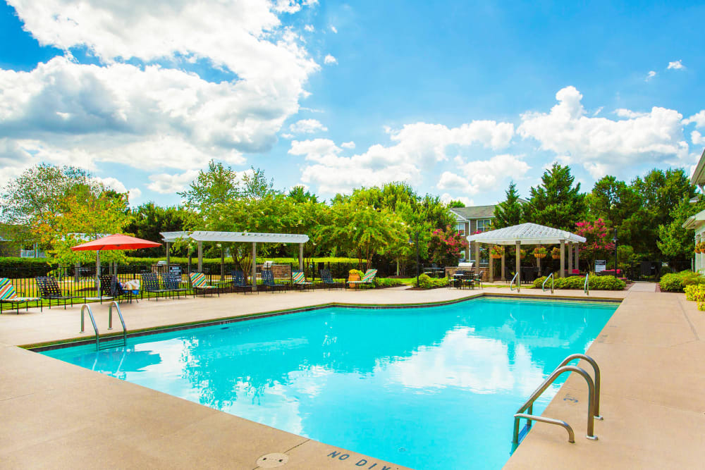 Mature trees and chaise lounge chairs around the swimming pool at The Seasons at Umstead in Raleigh, North Carolina