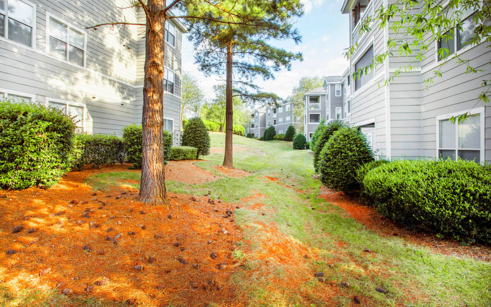 Link to neighborhood info for The Seasons at Umstead in Raleigh, North Carolina