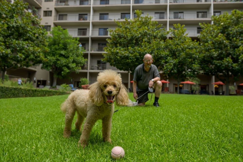 Resident enjoying the outdoors with his dog at WellQuest of Elk Grove in Elk Grove, California