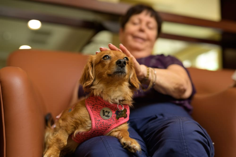 Happy resident and her dog at WellQuest of Elk Grove in Elk Grove, California