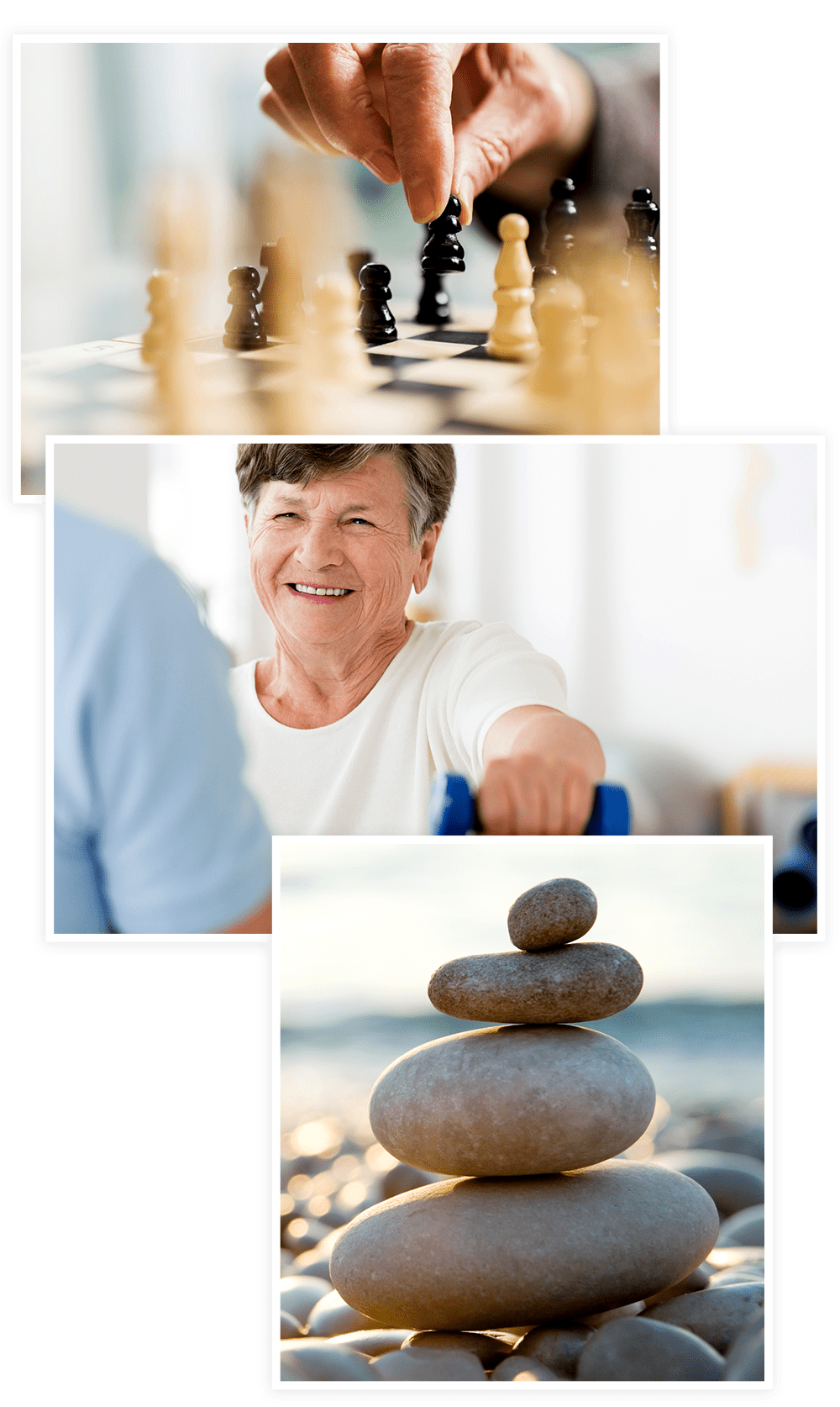We offer a variety of Senior Lifestyle options at our Clearwater at South Bay communities