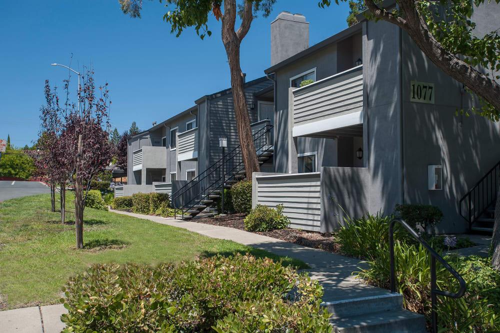 Exterior of  Plum Tree Apartment Homes in Martinez, California