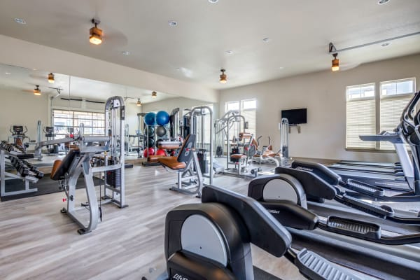 Fitness equipment at The Addison at South Tryon in Charlotte, North Carolina