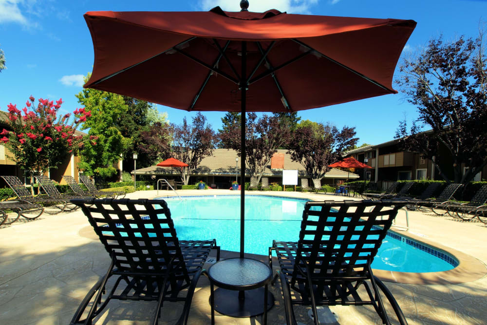 Resort-style swimming pool at Shadow Oaks Apartment Homes in Cupertino, California