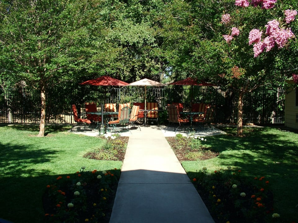 Sun Oak Sunlit Courtyard