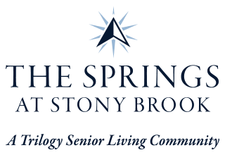 The Springs at Stony Brook