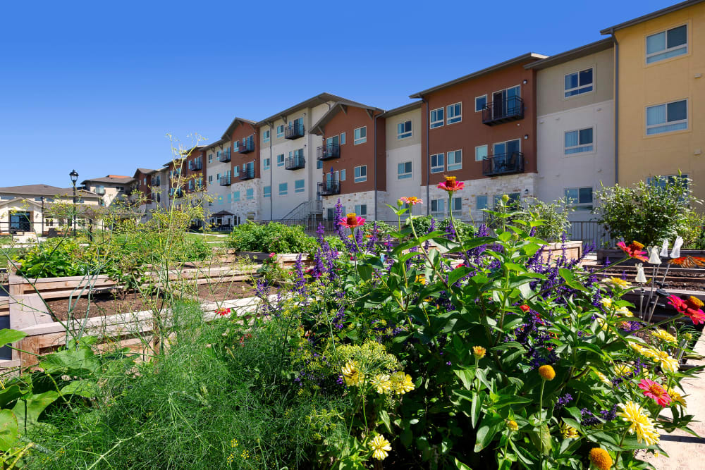 Raised bed gardens at Affinity at Southpark Meadows