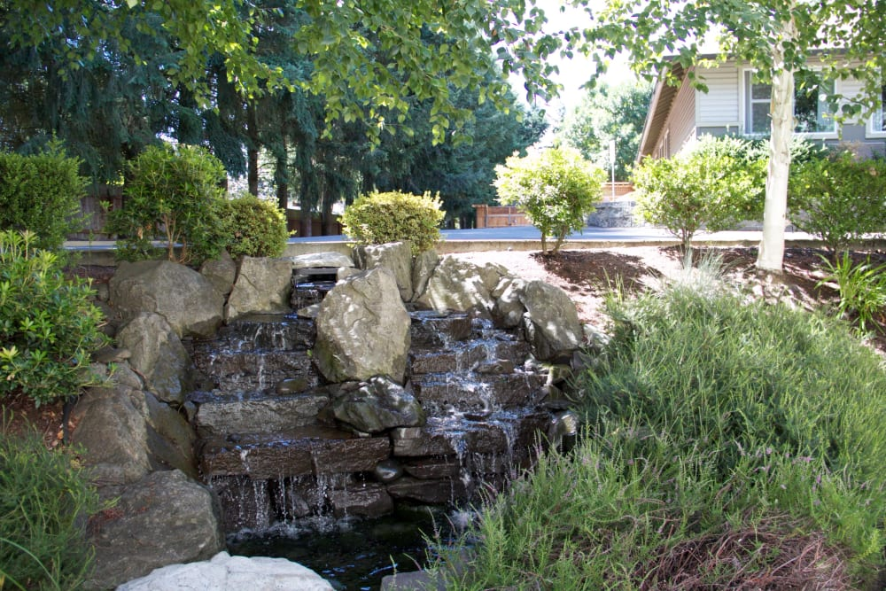 Water fountain outside facility at The Springs at Wilsonville in Wilsonville, Oregon.