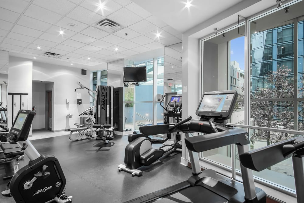 Our Apartments in Vancouver, British Columbia offer a Fitness Center