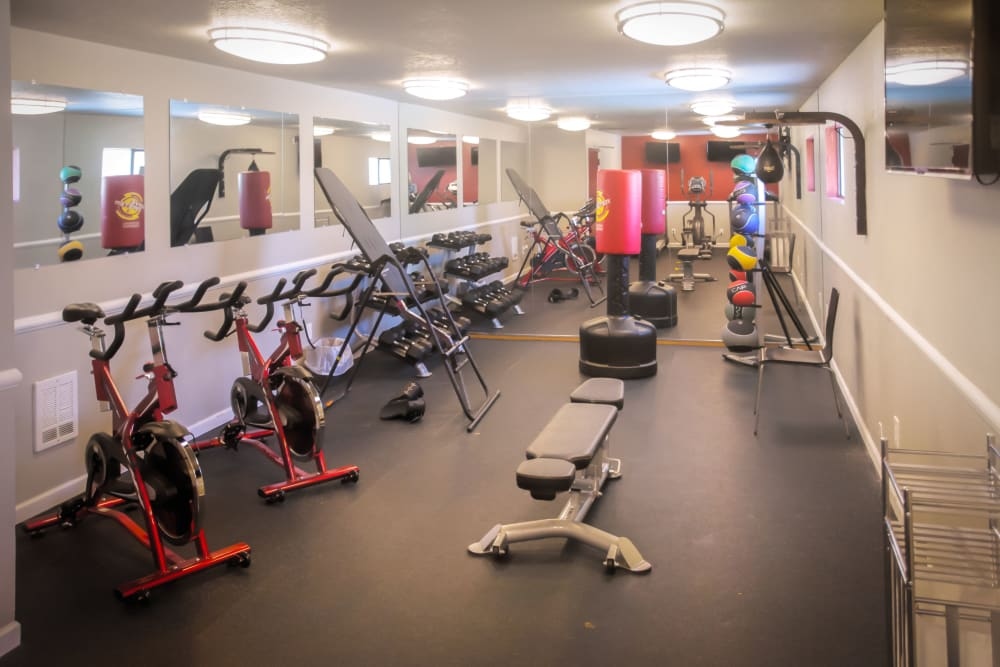 Fitness center at Terra Apartment Homes in Federal Way, Washington