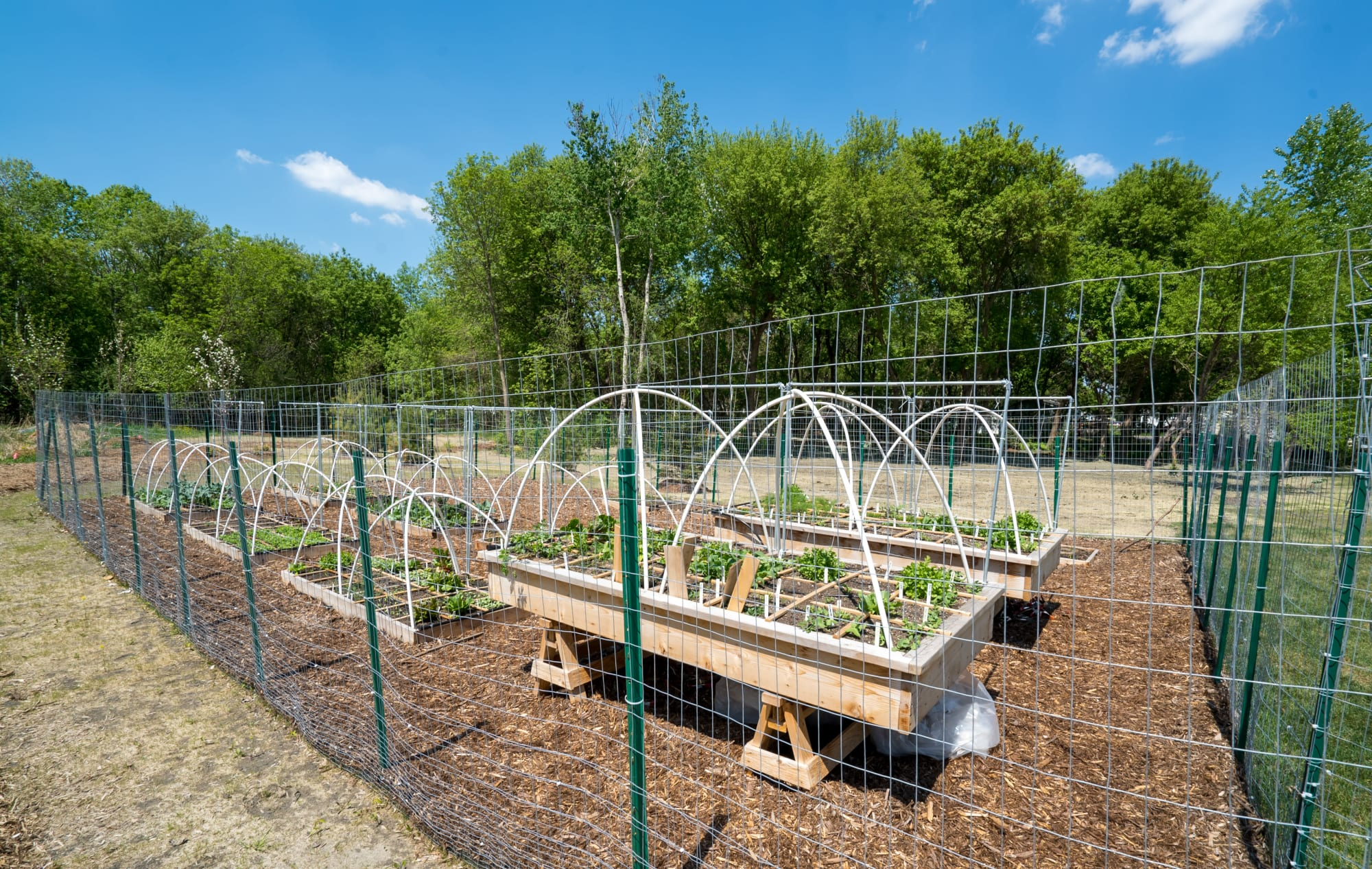 Awesome community garden at The Parkway off Central in Blaine, Minnesota