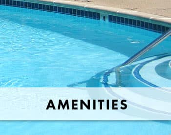 Features and amenities at King George Apartments