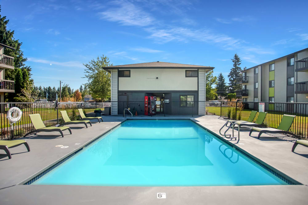 Large swimming pool with lounge chairs surrounding at Terra Apartment Homes in Federal Way, Washington