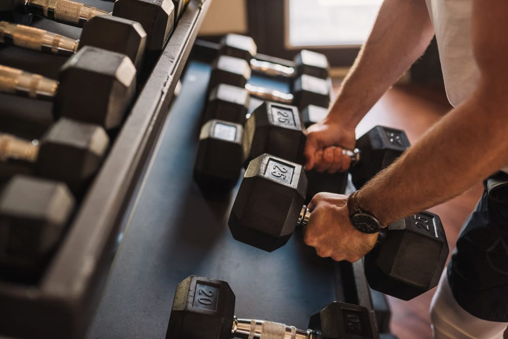 Springfield Apartments | Apartments with a Gym in Murfreesboro, Tennessee