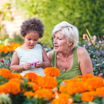 Grandmother and grandchild looking at flowers together at The Sanctuary at Brooklyn Center in Brooklyn Center, Minnesota